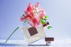 Perfumería, cosméticos, colección de la fragancia fotos de archivo libres de regalías