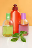 Perfumery bottles Stock Images