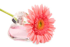 Perfumes and flower Stock Photography