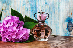 Perfumes and hydrangea on a blue wooden background Royalty Free Stock Photos