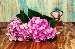 Perfumes and hydrangea on a blue wooden background Royalty Free Stock Photo