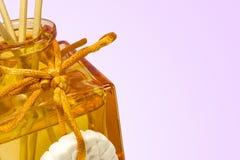 Perfumowanie dyfuzor Fotografia Stock