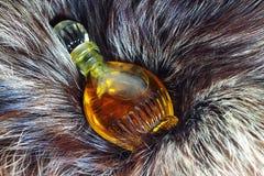 perfumy Fotografia Stock