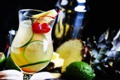 Perfurador alcoólico do pisco do cocktail com aguardente, xarope, abacaxi e imagens de stock