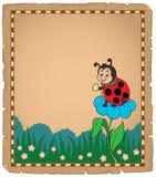 Pergaminho com o joaninha na flor Imagens de Stock Royalty Free