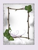 pergaminho - frame da hera e da filial   Fotos de Stock