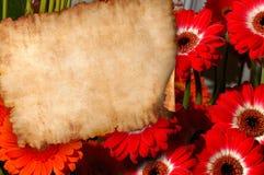 Pergamino en fondo retro de la carta de las flores stock de ilustración