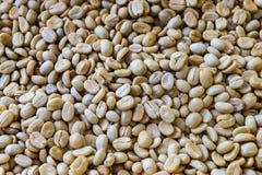 Pergaminowa kawa Zdjęcie Royalty Free