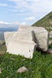 pergamon fördärvar kalkonen Arkivfoto