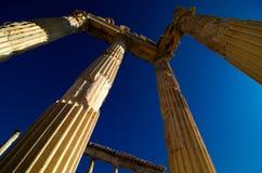 pergamon kalkon Arkivfoto