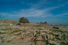 Pergamon Stock Photos