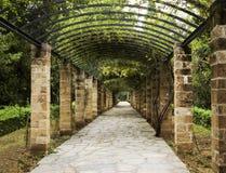 Pergola à Athènes, Grèce Photographie stock