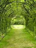 Pergola. Garden with pergola and climbing plants Stock Photography
