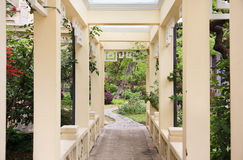 Pergola. And plant in a garden Royalty Free Stock Photo