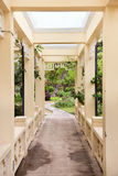 Pergola. And plant in a garden Royalty Free Stock Image