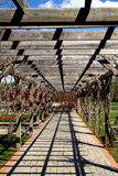 Pergola Royalty Free Stock Photos