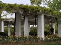Pergola al cimitero nazionale di Arlington Immagine Stock Libera da Diritti