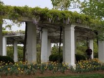 Pergola an Arlington-nationalem Friedhof Lizenzfreies Stockbild