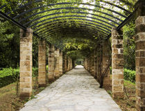 Pergola in Athens, Greece. Beautiful pergola in Athens, Greece Stock Photography
