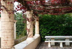 Pergola in the autumn. Pergola in the autumn, red grapevine leaves falling onto the patio below Stock Images