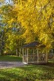 Pergola in Autumn Park Stock Image