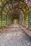 Pergola in Autumn Park Stock Photos