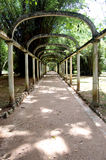 Pergola at Botanical Garden Stock Photos