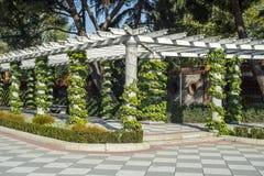 Pergola in Cecilio Rodriguez Gardens. Retiro Park, Madrid. Spain Stock Photos
