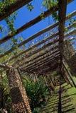 Pergola da videira em jardins de Fairchild Fotografia de Stock