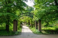 Pergola dans le jardin botanique Image libre de droits