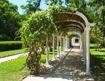 Pergola dans le jardin botanique dans Rio de Janeiro images stock