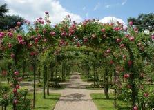 Pergola in een Franse tuin Stock Foto