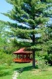 Pergola en bois Photographie stock libre de droits