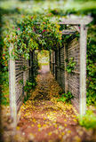 Pergola with flowers Royalty Free Stock Images