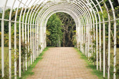 pergola at garden Royalty Free Stock Photos