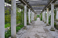 Pergola at garden Royalty Free Stock Photo