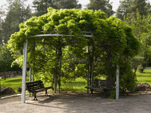 Pergola gazebo in a beautiful garden Stock Photo
