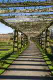 Pergola in Kew Gardens Stock Image