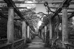 Pergola Royalty Free Stock Images