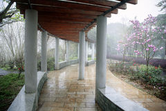 Pergola in misty rain Stock Images