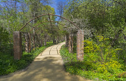 Pergola in a park. The beginning of May. Royalty Free Stock Photography