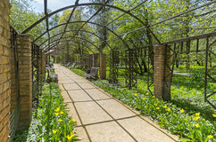 Pergola in the park, the view from the inside. Royalty Free Stock Photo