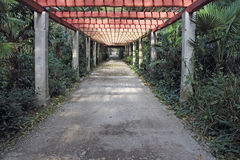 Pergola passage Royalty Free Stock Images