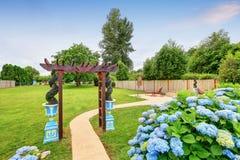 Pergola piacevolmente decorata e fiori blu nel cortile Immagini Stock