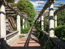 Pergola, a raised walkway, overgrown with vines. royalty free stock photo