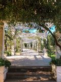 Pergola - tunnel with roses. royalty free stock photo