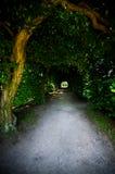 Pergola under old trees Stock Photography