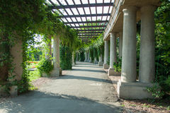 Pergola Wroclaw - Pologne photographie stock