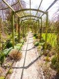 Pergolapassage in de tuin door gele narcissen in vroeg s wordt omringd dat stock fotografie