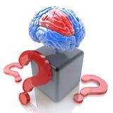 Perguntas para o cérebro da inteligência Fotos de Stock Royalty Free